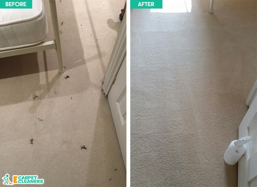 Cleaning Carpets in Croydon
