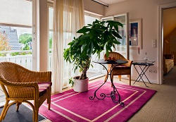 w6 carpet cleaners hire