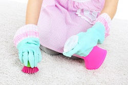 kingston upon thames carpet steam cleaners kt2
