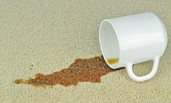 Carpet Cleaners Services in Hammmersmith and Fulham