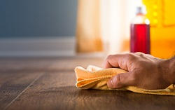 Waltham Forest Domestic Cleaner