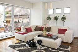 Upholstery Pick up and Delivery Companies