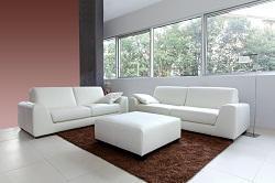 w4 rug cleaning company w3