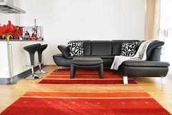 se26 steam treatments of carpets se20