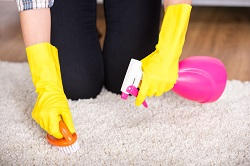 Top Carpet Cleaning Companies in Lewisham