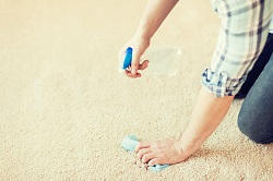 professional carpet cleaner in bexley