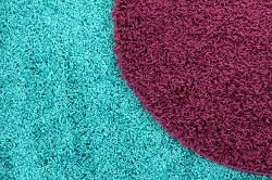 carpet cleaning firms in harrow